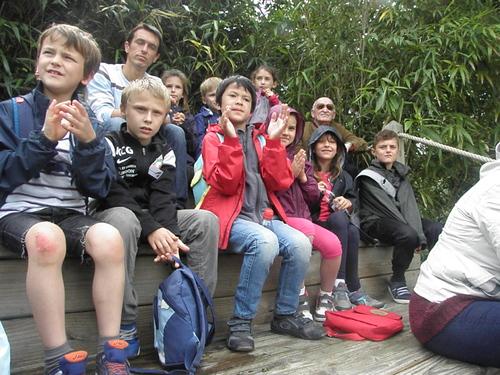 Zoo de la flèche (2) La visite , les enfants captivés ...