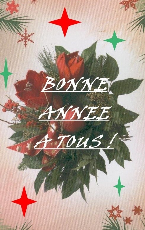 bonne-annee1-copie-1.jpg