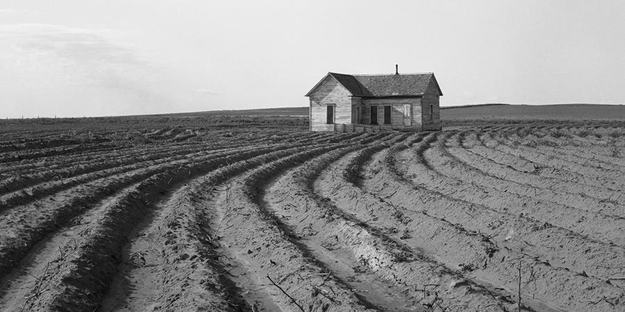 Crédit d'image: Dorothea Lange, Tractored Out (détail), 1938, photographie, domaine public.