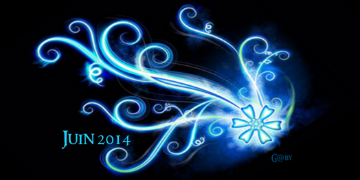 Bilan de Juin 2014