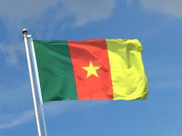"""Résultat de recherche d'images pour """"cameroun"""""""