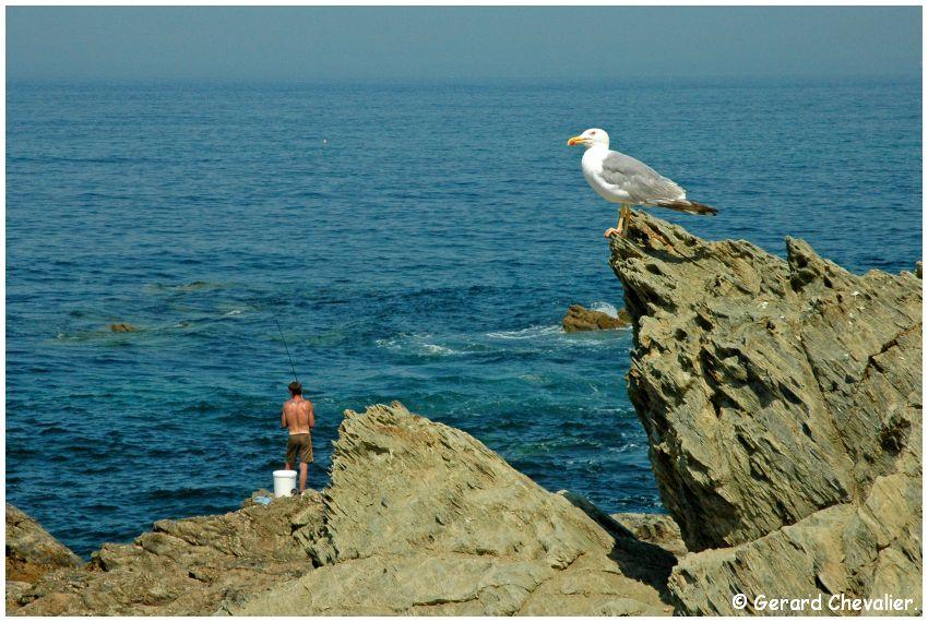 Porto Covo - (Portugal) Les pêcheurs.