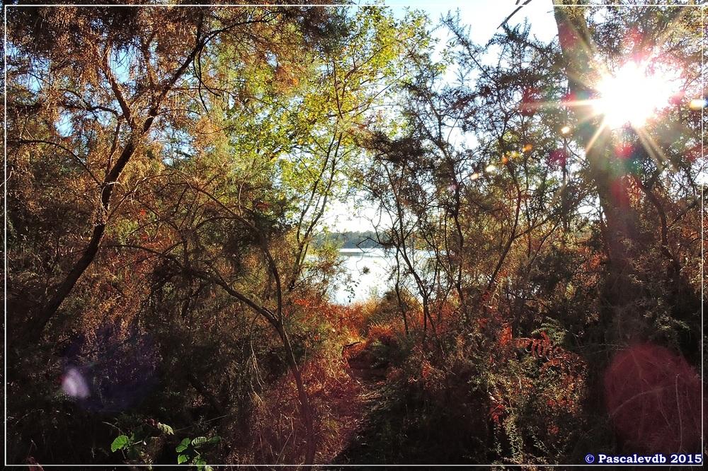 Reflets et lumières d'automne au lac du Bousquey - 3/6