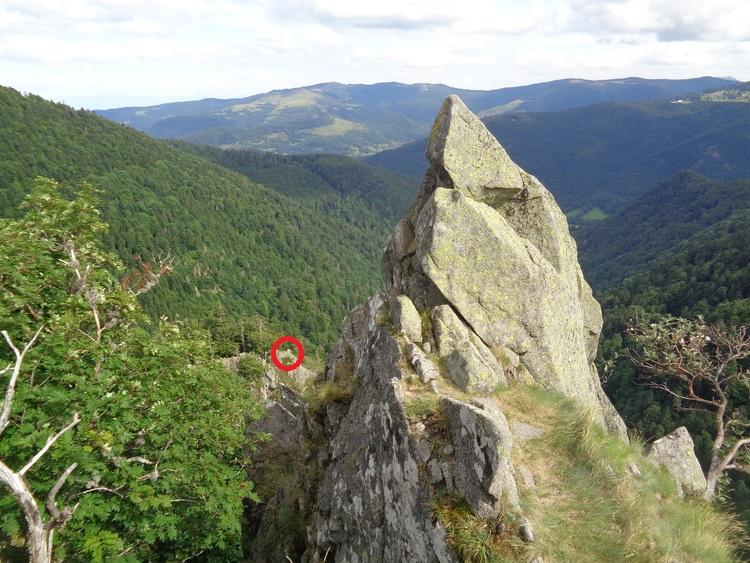 Vosges - vers les Spitzkoepfe