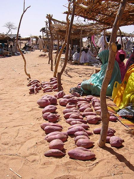 450px-Yams at refugee camp in Chad