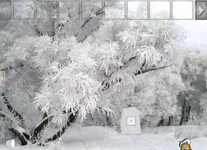 Jouer à Snow forest adventure escape