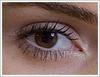 eye29