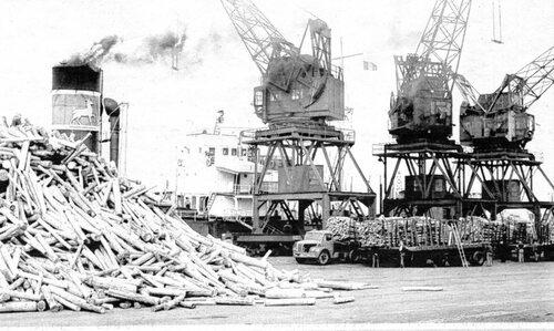 Lorsque des tonnes de rondins étaient déchargées au port