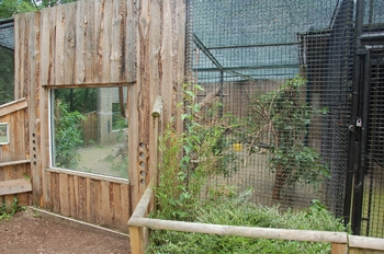 Zoo Neunkirchen 2012 140