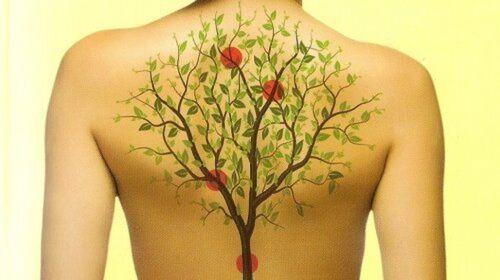 Les organes du corps liés aux émotions