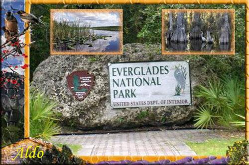 PPS Everglades