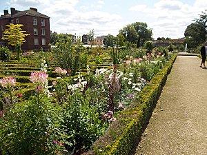 jardin des plantes d'Amiens (6)