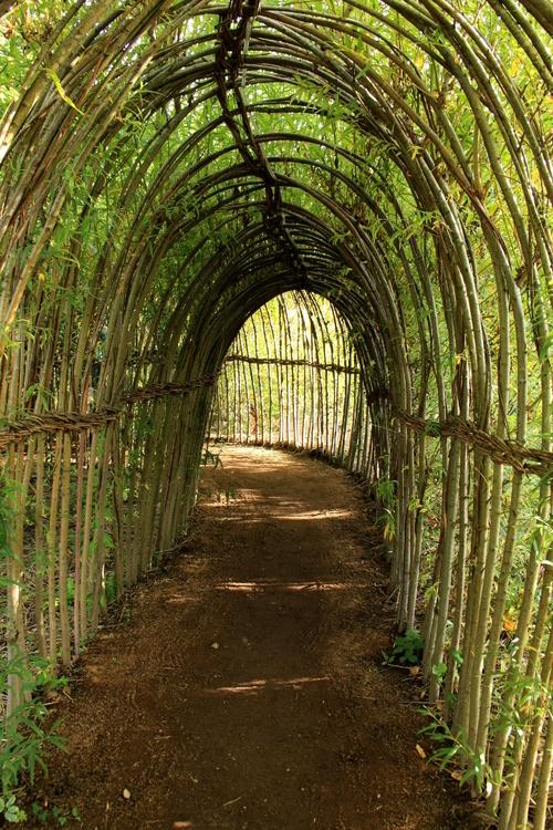 Architecture en bambou