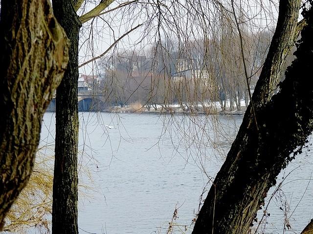 Bords de Moselle hiver 2 Marc de Metz 2012