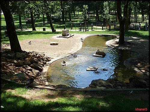 parc mont de marsan (123)