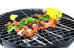 Weber Indoor Outdoor Electric Grill - Buy Electric, Charcoal and Propane Grills At Best Prices