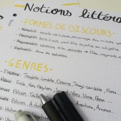 Révision BAC Français #1