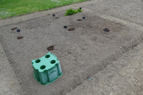 6 mai : semis des cucurbitacées