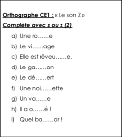 Orthographe CE1 : le son Z (s ou z) (2)