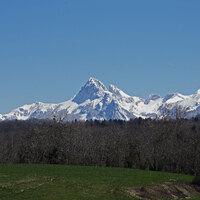 Début du printemps sur le Plateau de Gavot - Avril 2015