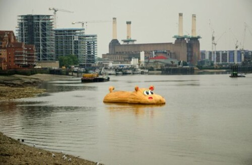 Hofman Hippopothames by Mike T flickr