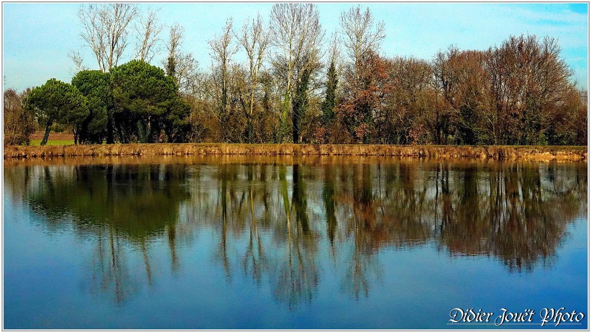 85 . Vendée - La Chaize le Vicomte (26) - Etang communal