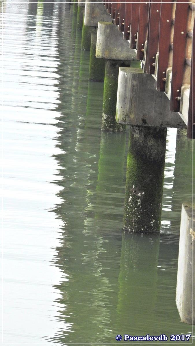 Traversée du Bassin entre Arcachon et le Cap Ferret - 8/14