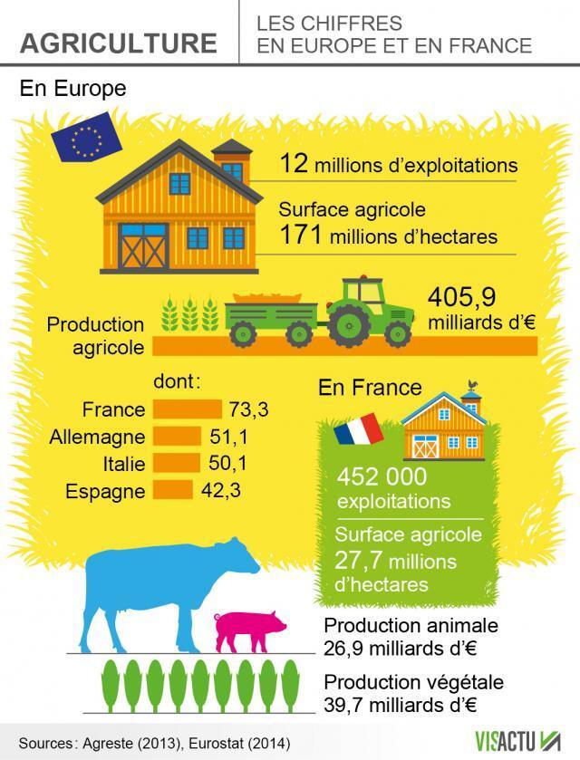 Agriculture : les chiffres en Europe et en France