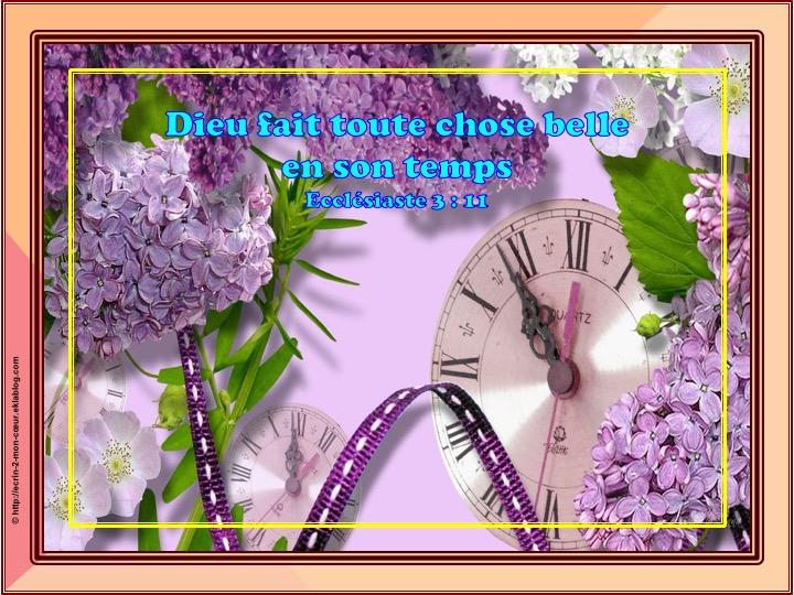 Dieu fait toute chose belle en son temps - Ecclésiaste 3 : 11