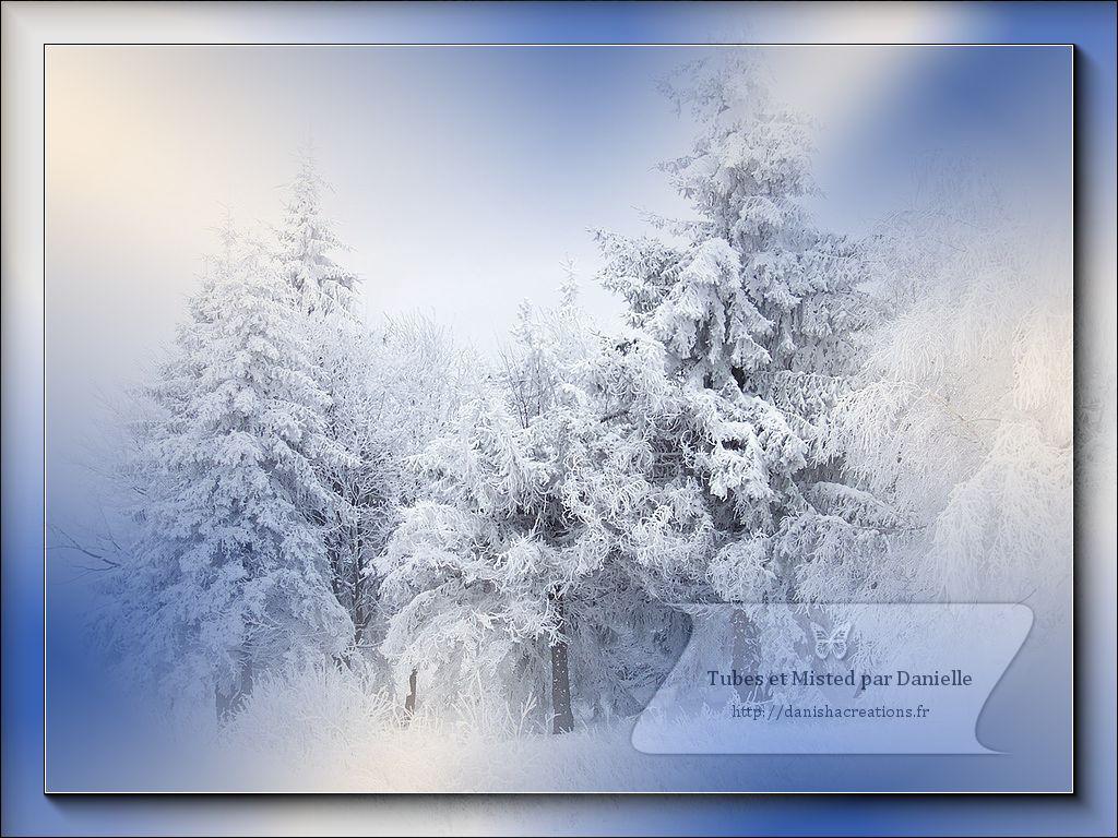 hiver13