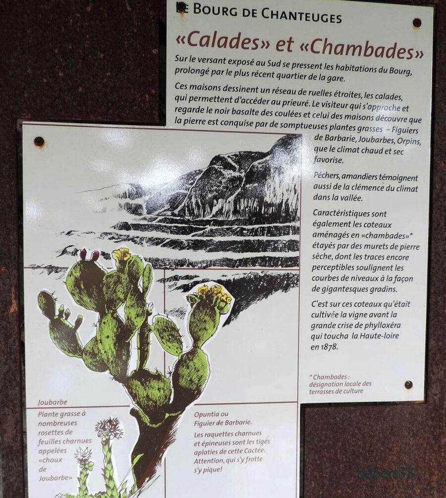 Chanteuges (43)