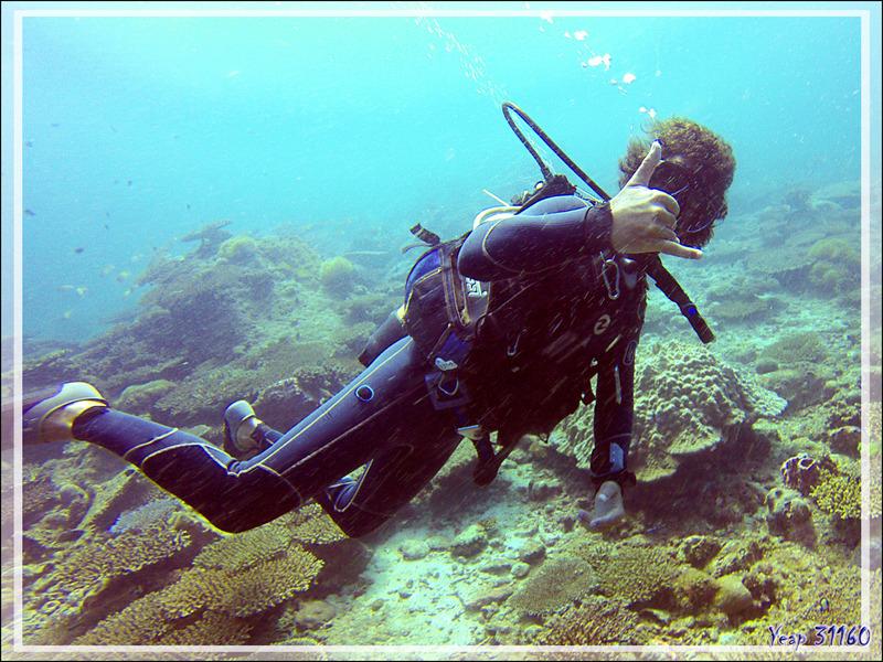 Un nouveau jour, deux nouvelles plongées - Nosy Mitsio - Madagascar