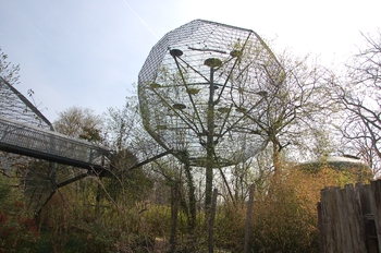 zoo cologne d50 2012 201