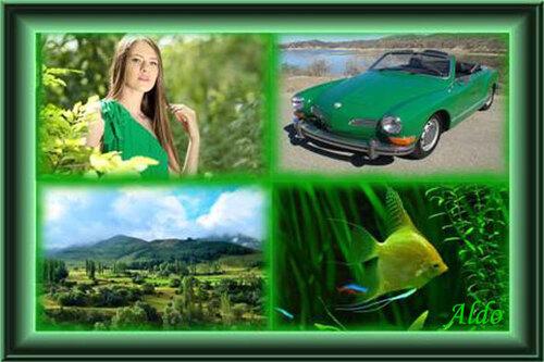 PPS Vert