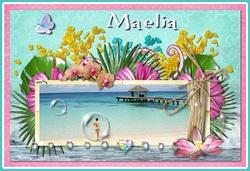 Le blog de Maelia