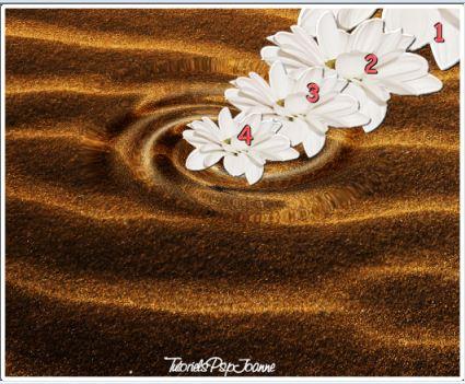 Animation Fleur à l'Eau