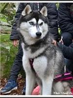 Naïka (presque 3 ans)