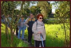 Gradignan Bois de Laburthe 7 Avril