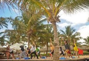 dance ballet class yoga palms tree