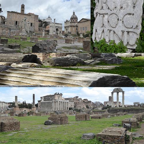 MONT PALATIN SUR FORUM ROMAIN - 4
