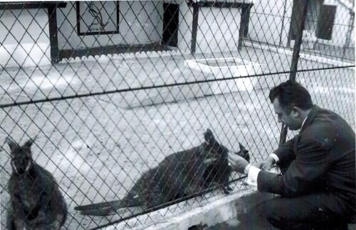 Jean Richard et les pensionnaires de son zoo privé d' Ermenonville