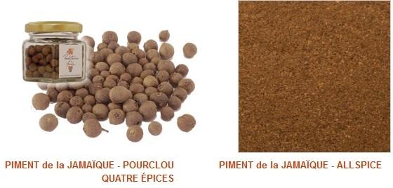 Bois d'Inde Pimenta dioica Graines