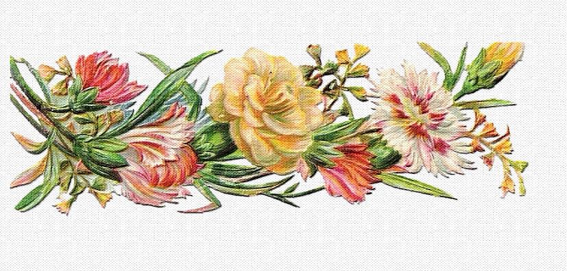 Tubes fleurs relief