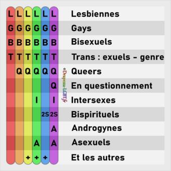 les LGBTQQI2SAA et les SS