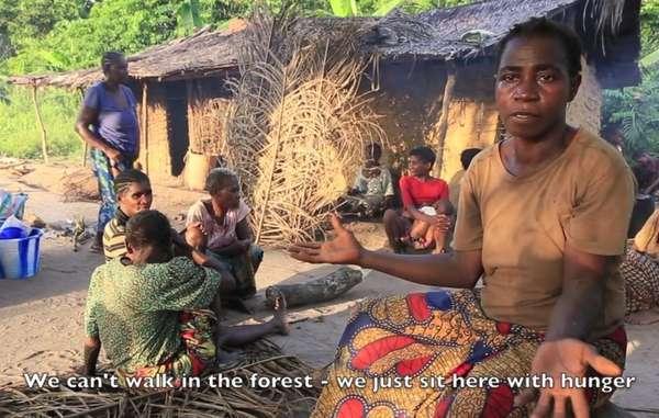 Les Pygmées bayaka et les Baiga dénoncent les abus commis par les gardes forestiers et le harcèlement dont ils sont victimes pour les forcer à quitter leurs terres.