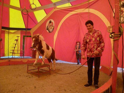 Petit cirque dans nos cantons