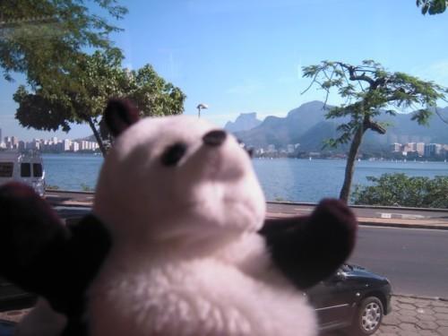 un panda à Rio 042
