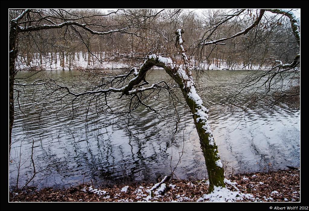 Un étang fantasmagorique