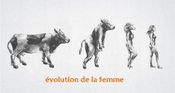 evolution_femme.jpg