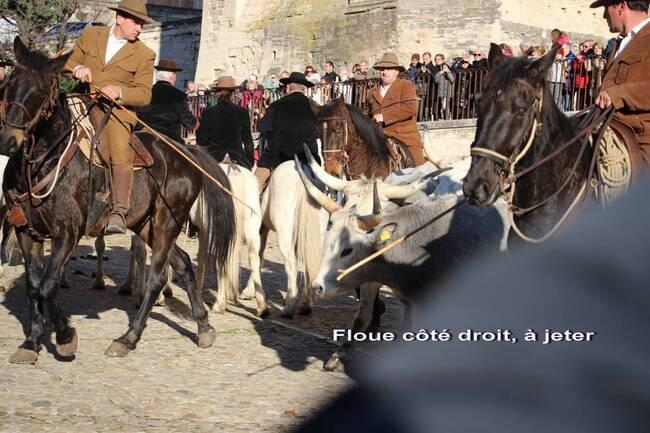"""Phot Préfére """"moche"""""""